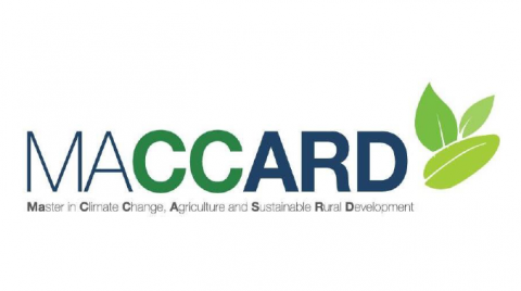 Newsletter No1 Proyecto MACCARD